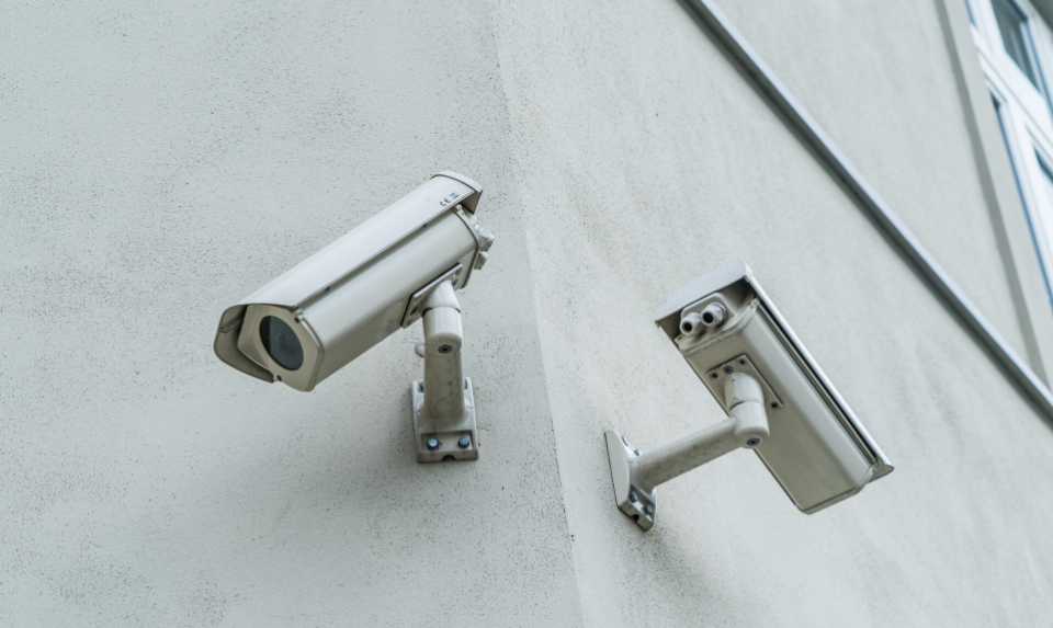 photo of two wireless outdoor cameras